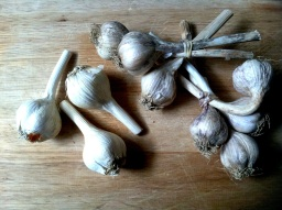 Roasted Garlic Pasta